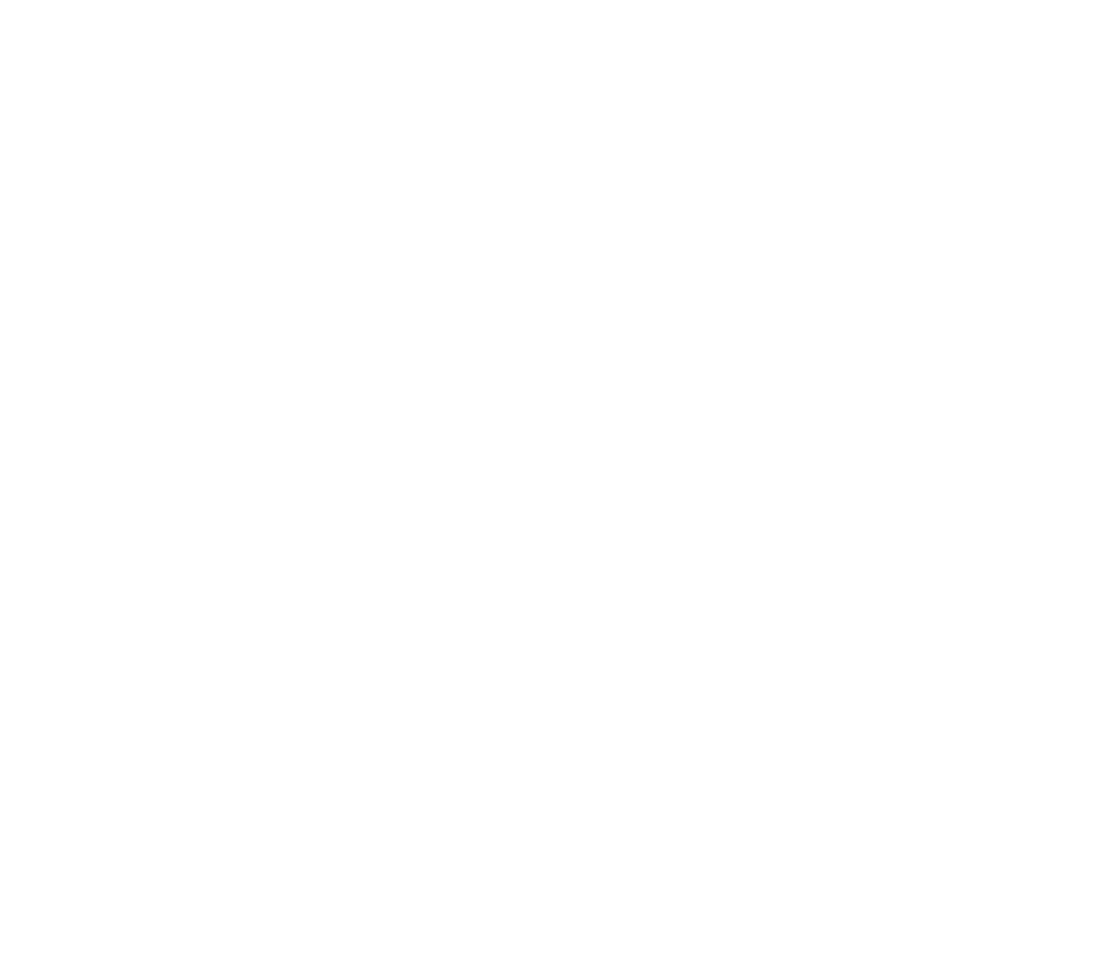 AVPT White Logo